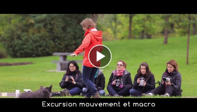 video-exc-mouvement